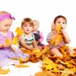 Group of babies  with yellow leaves - Stock Photo