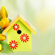 Nestbox and yellow tulips — Stock Photo