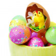 Stock Photo: Easter eggs and chicken
