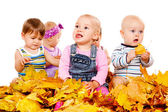 Babies group in yellow leaves — Stock Photo