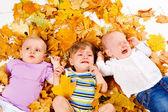 Babies lying on yellow leaves — Stock Photo