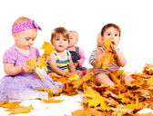 Group of babies with yellow leaves — Stock Photo