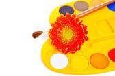Akvarel barvy — Stock fotografie