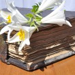Stock Photo: Lilies on old book