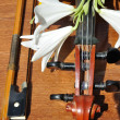 Stock Photo: Lilies to rest upon violin