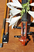 Lilies to rest upon violin — Stock Photo