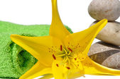 Yellow lily and stone — Stock Photo