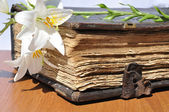 Lilies on old book — Stock Photo