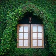 Wooden window at climber house - Foto de Stock  