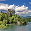 Castle on a hill besides a lake (Nedec, Poland) — Foto Stock