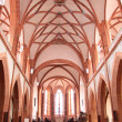 Church of St. Goar — Stock Photo #11396342