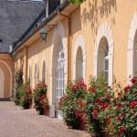 Palace of Johannisberg — Stock Photo #11403120