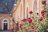 Palace of Johannisberg — Stock Photo
