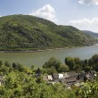 Middle Rhine Valley near Bacharach — Stock Photo