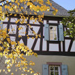 Autumn leaves in front of an old half-timbered house — Stock Photo