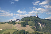 Rochus chapel in Bingen — Stock Photo
