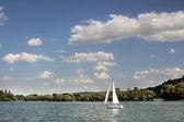 Sailing boat on the Rhine — Stock Photo