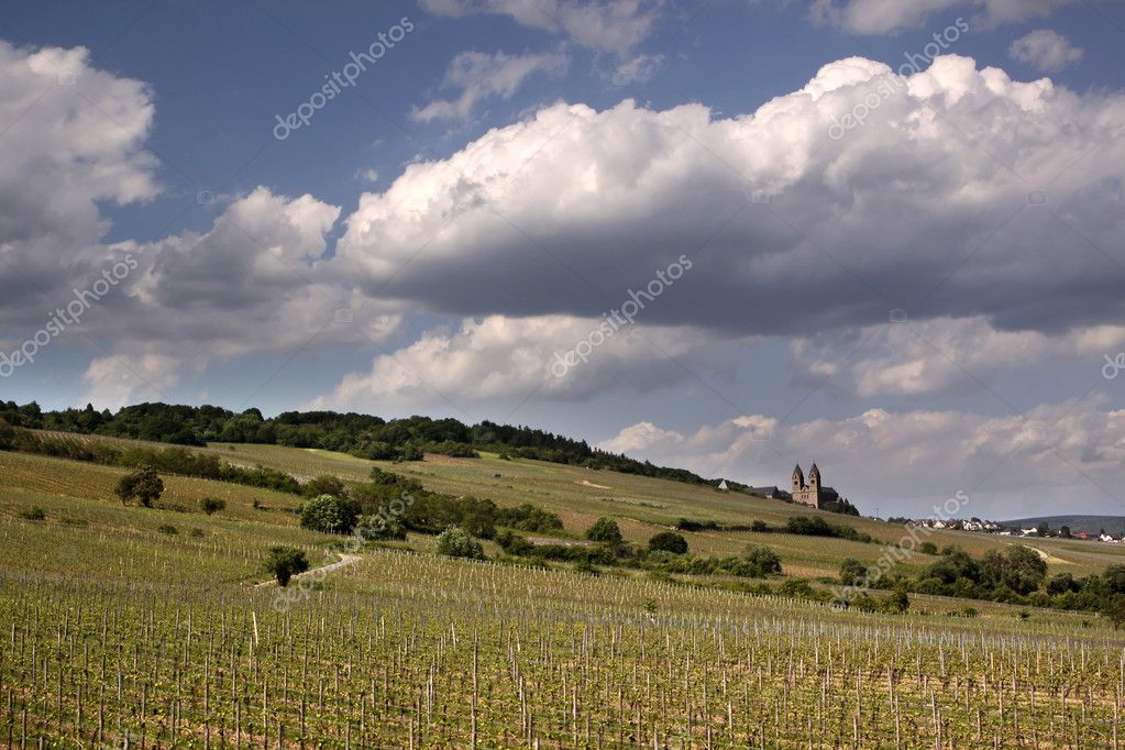 Abbey of St. Hildegard near Ruedesheim in the Rheingau, Hesse, Germany — Stock Photo #11473778