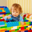 Little boy playing with plastic blocks - Stock Photo