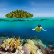 Corals, diver and palm island - Stock Photo