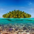 Coral reef and the Island — Stock Photo