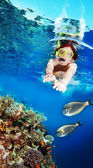 Swimming with the fishes — Stock Photo