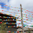 Foto Stock: TibetPrayer Flags