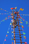 Naxi Ethnic Ladder Climbing — Stock Photo