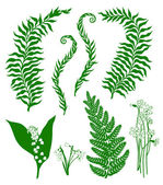 Skogen växter — Stockvektor