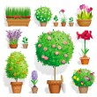Stock Vector: Set of pot plants