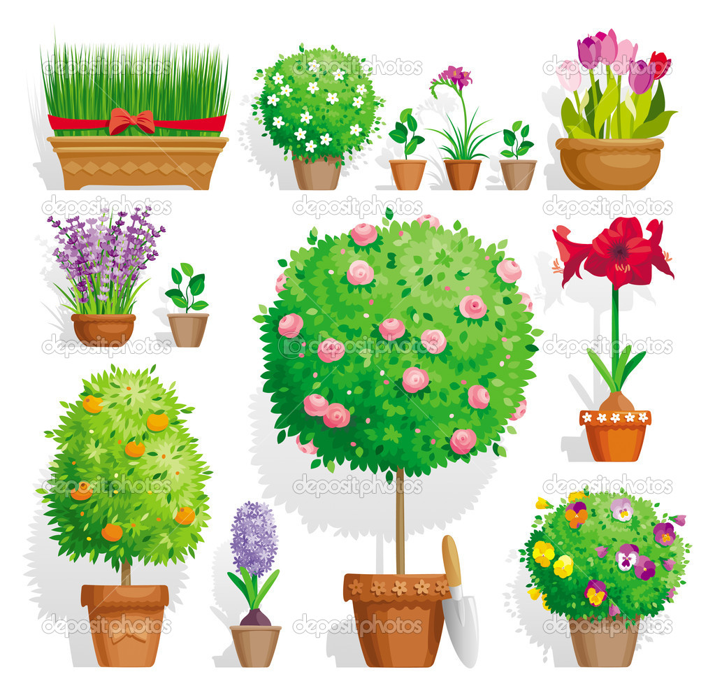 Set of pot plants with flowers and leaves  Stock Vector #11621991