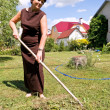 Woman rakes up oblique grass — Stock Photo