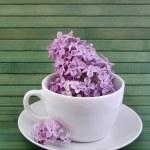 丁香茶 — 图库照片