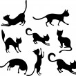 Cat set — Stock Vector #11227861