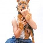 The Dog — Stock Photo #11834401