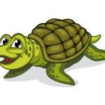 Green turtle reptile — Stock Vector