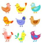 Fun doodle birds and cocks — Stock Vector