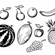Set of isolated fresh fruits — Stock Vector