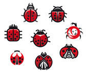 Ladybugs and ladybirds — Stock Vector