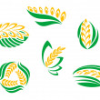 Symbols of cereal plants — Stock Vector #12408774