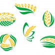 Royalty-Free Stock Vector Image: Symbols of cereal plants