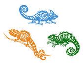 Chameleons set — Stock Vector