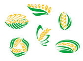 Symbols of cereal plants — Stock Vector