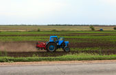 Blue tractor on a field — Stock Photo