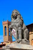 Heraldic lion — Стоковое фото