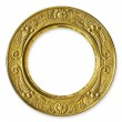Gold Metal Circle Frame — Foto Stock