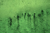 Green Grunge Mould Background — Stock Photo