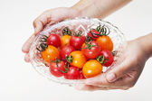 Cherry_tomatoes and hands — Stockfoto