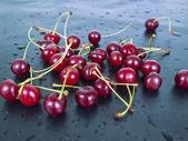 Il y a beaucoup de petits fruits cerises — Photo