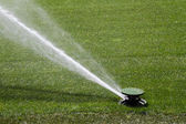 Sprinkler washing green grasses — Stock Photo